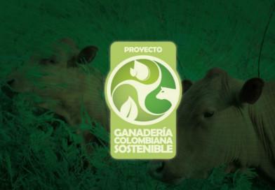 Ganadería Colombiana Sustentable, un proyecto que conserva bosques y ambientes naturales