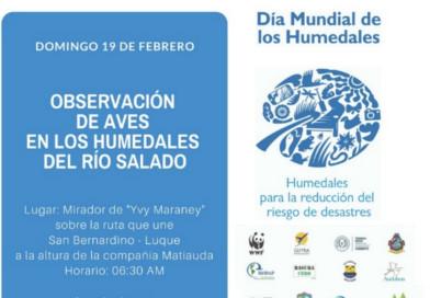 Salida de Observación de Aves para conmemorar la importancia de los humedales
