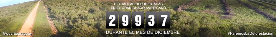 marcador-deforestacion