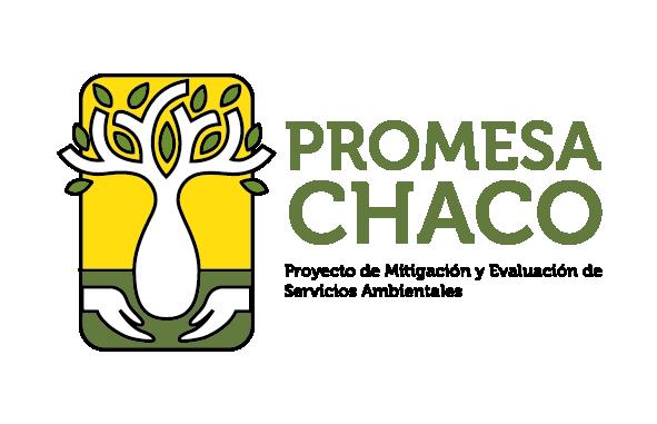 Logo Promesa Mix-01