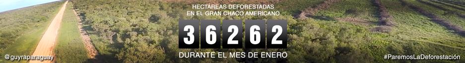 marcador-deforestacion-enero-2017