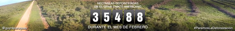 marcador-deforestacion-febrero