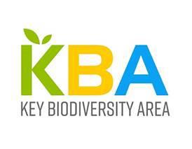 La comunidad KBA tiene nuevo liderazgo