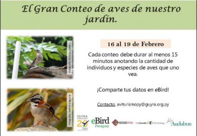 ¡Contando aves en comunidad!