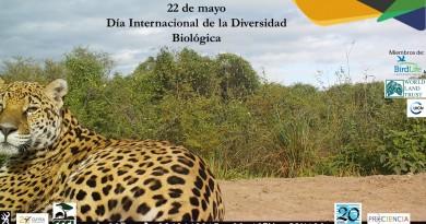 22 de mayo Día Intern Diversidad Biológica