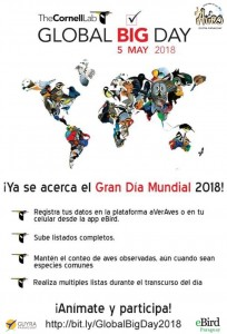 global big day_2