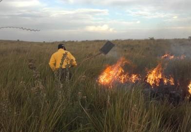 Incendio de pastizal en área de conservación Guyra Retã